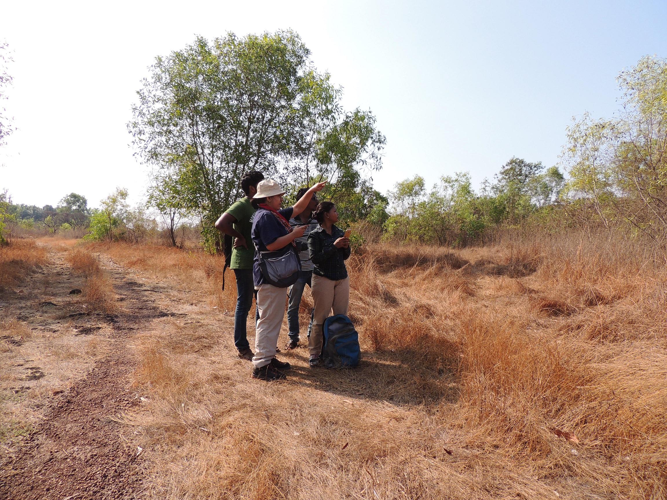 BEL members looking for Jungle Babbler in Kerala
